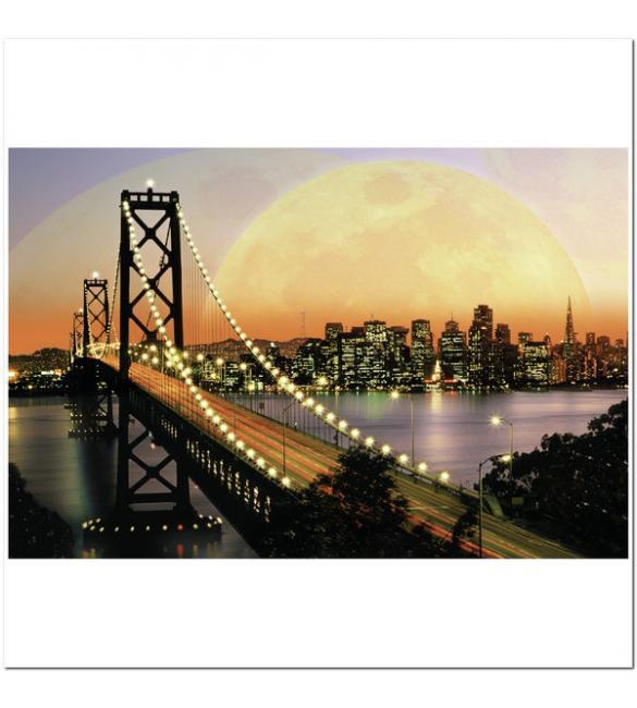 Пазлы Ночной Сан-Франциско 3000