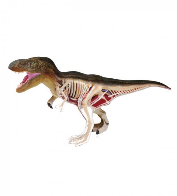 Объемная анатомическая модель Динозавр Тираннозавр