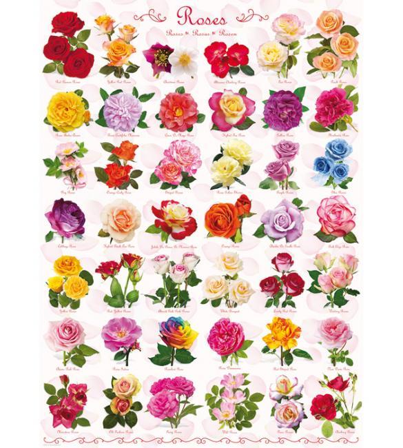 Пазлы Розы 1000