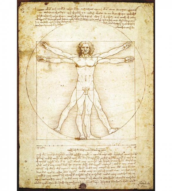 """Пазлы """"Витрувианский человек"""" Леонардо да Винчи 1000"""