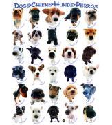 Пазлы Собаки 300