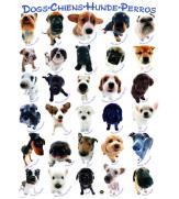 Пазлы Собаки 500