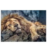Пазлы Спящий лев 1000