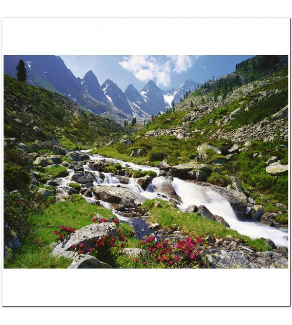 Пазлы Австрийские горы 3000