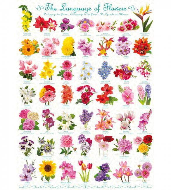 Пазлы Язык цветов 1000