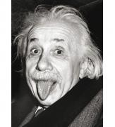 Пазлы Эйнштейн 1000