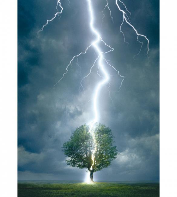 Пазлы Молния ударяющая в дерево 1000