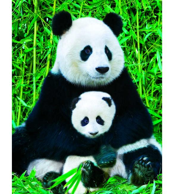 Пазлы Панда с детенышем 100
