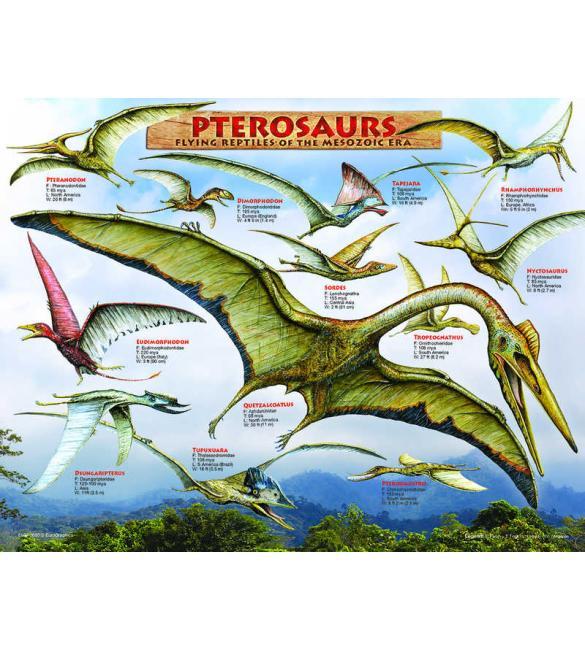 Пазлы Летающие динозавры 100