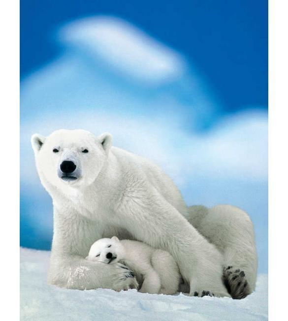 Пазлы Белая медведица с медвежонком 100