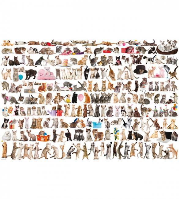 Пазлы Мир кошек 2000