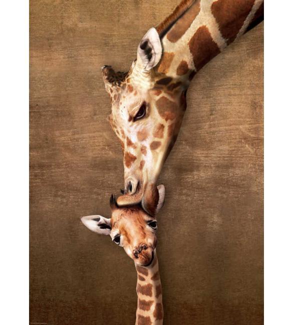 Пазлы Жирафы - материнский поцелуй 500