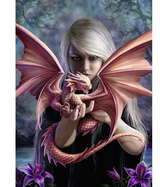 Пазлы Девушка с драконом 500