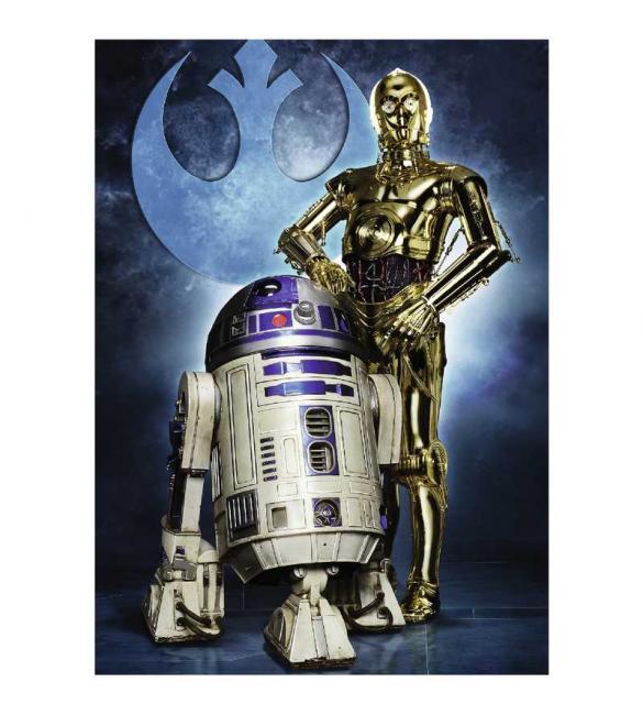 Пазлы R2-D2 и C-3PO 1000