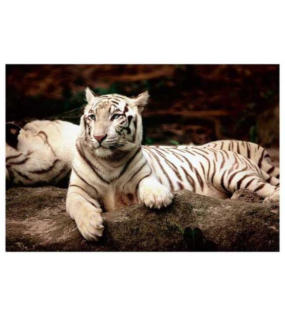 Пазлы Бенгальский тигр 1500